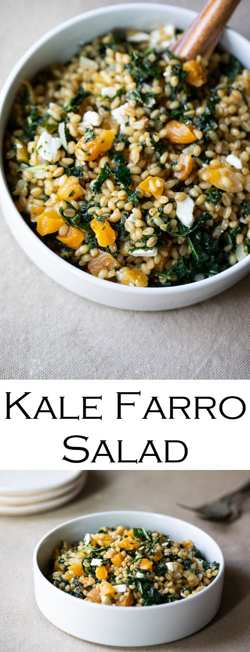 Kale Farro Salad Recipe. A delicious, healthy farro salad to enjoy warm or cold. A healthy, whole grain dinner recipe and a perfect make-ahead lunch idea, the vegetarian recipe is a winner for all. #LMrecipes