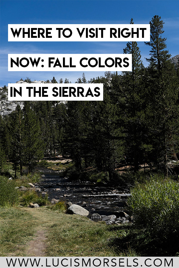 Fall Colors in the Eastern Sierras. See photos of Rock Creek Canyon off Highway 395 in the Eastern Sierras. Travel. California. Hiking. Fishing.