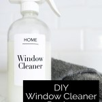 DIY WINDOW CLEANER Review