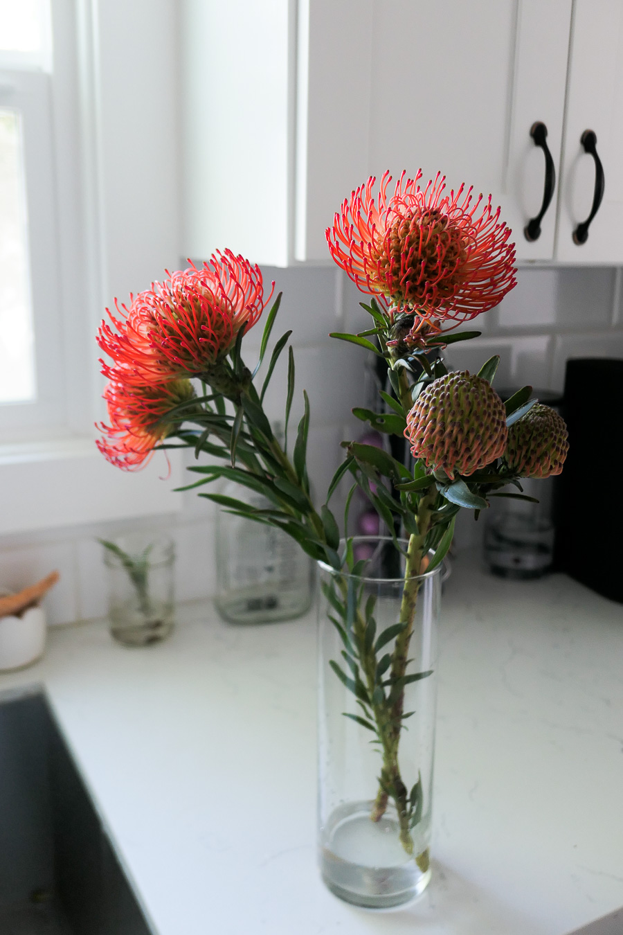 red pincushions in vase - sustainability guilt