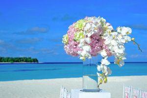 destination wedding planning, destination wedding in Mexico, destination wedding in Hawaii