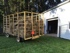 Hay wagon outside the barn.