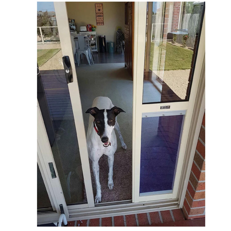 patiolink sliding door greyhound door panel insert flap includes locking bracket for doors up to 2 1m