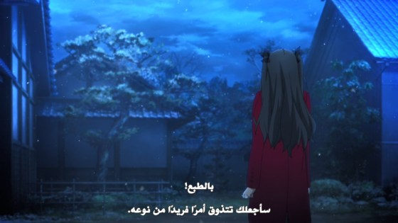 fate-stay-night-10-11