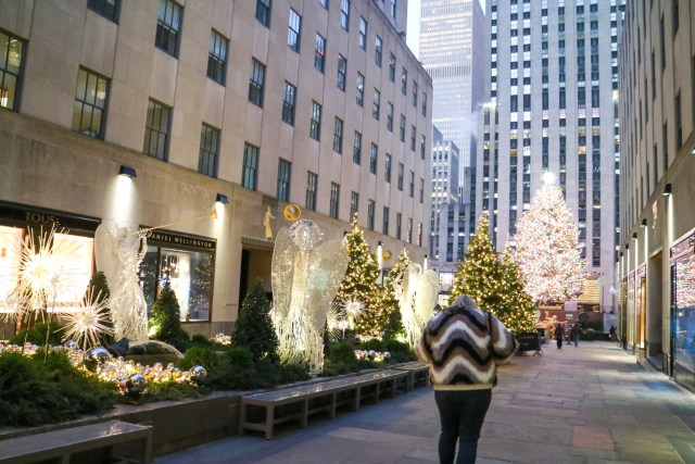 lucy walking to the Rockefeller tree at dawn