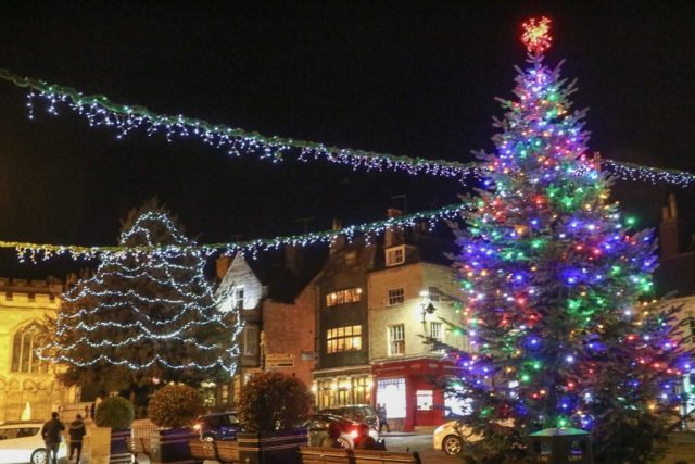 christmas trees and lights in stamford
