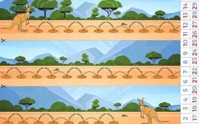 Wally le kangourou: pour compter de 2 en 2, 3 en 3, de 5 en 5, etc jusqu'à 30
