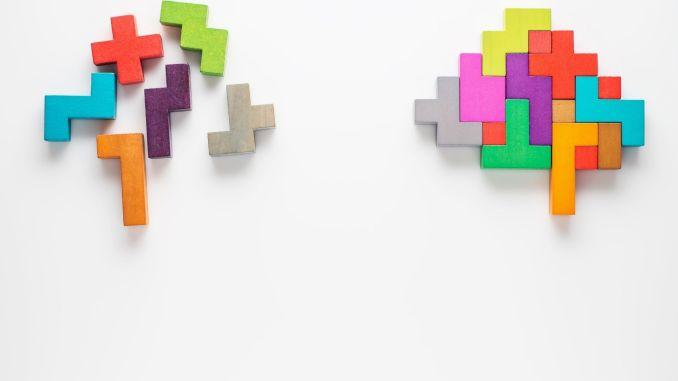 brain made of lego