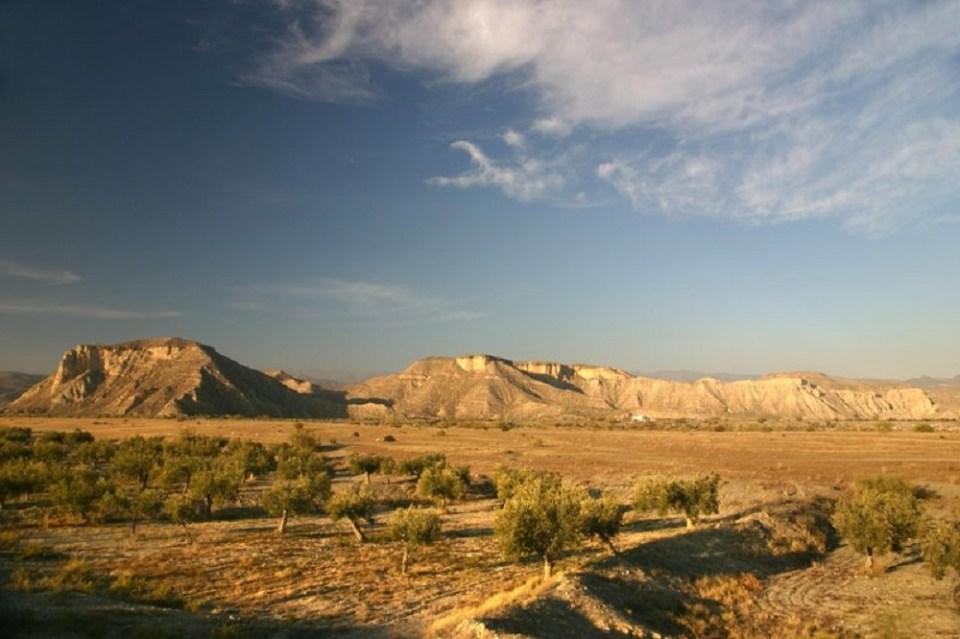 Ruta por el desierto de Tabernas