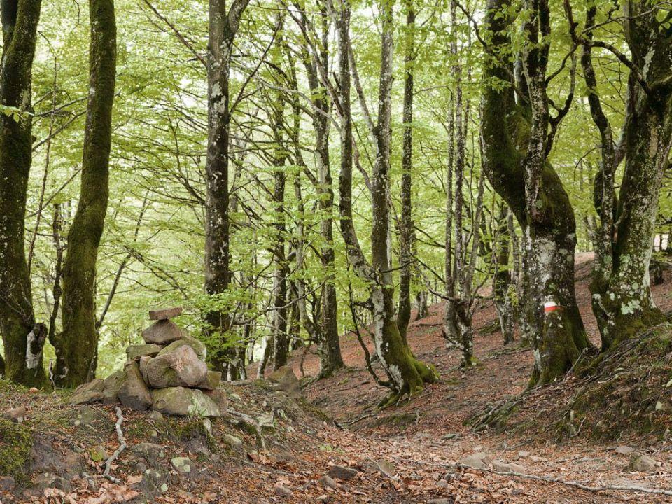 Mejores rutas de senderismo de País Vasco
