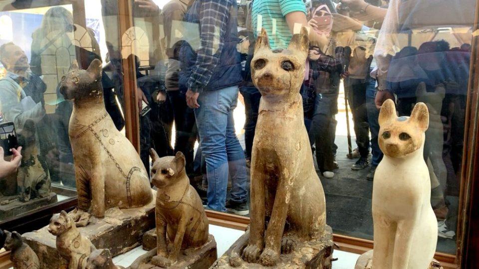 animales momificados nuevos descubrimientos arqueológicos en Egipto