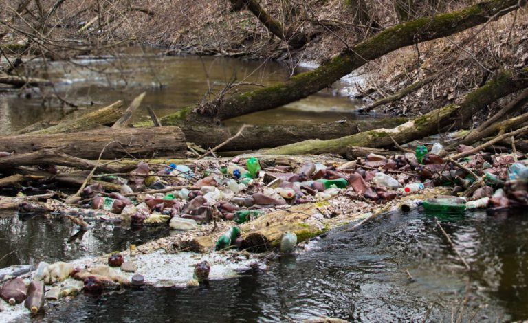 residuos en la naturaleza