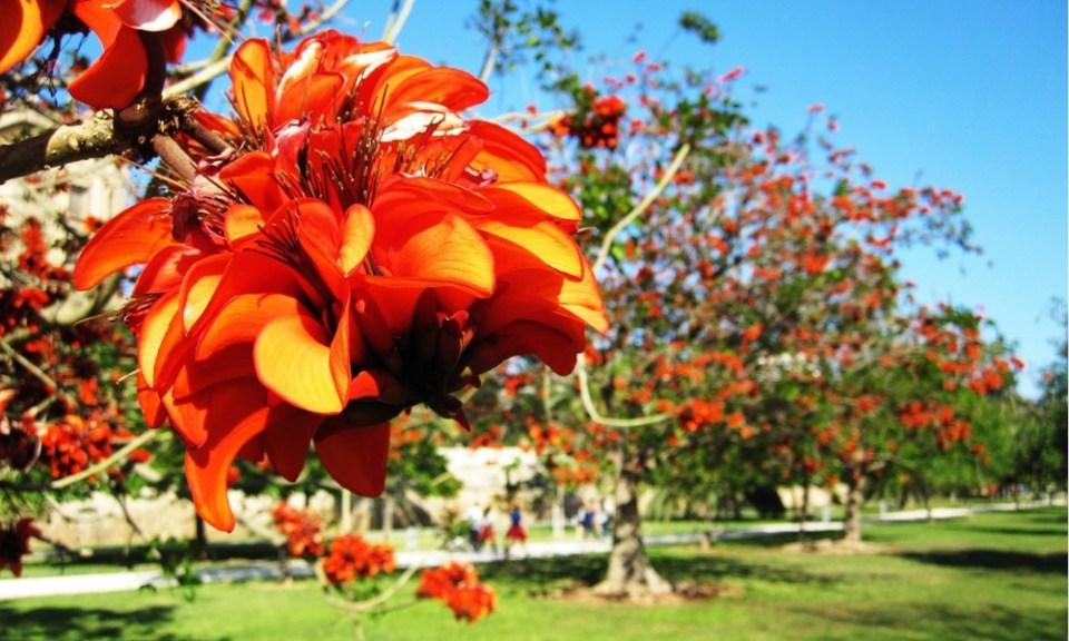 Jardines Turia