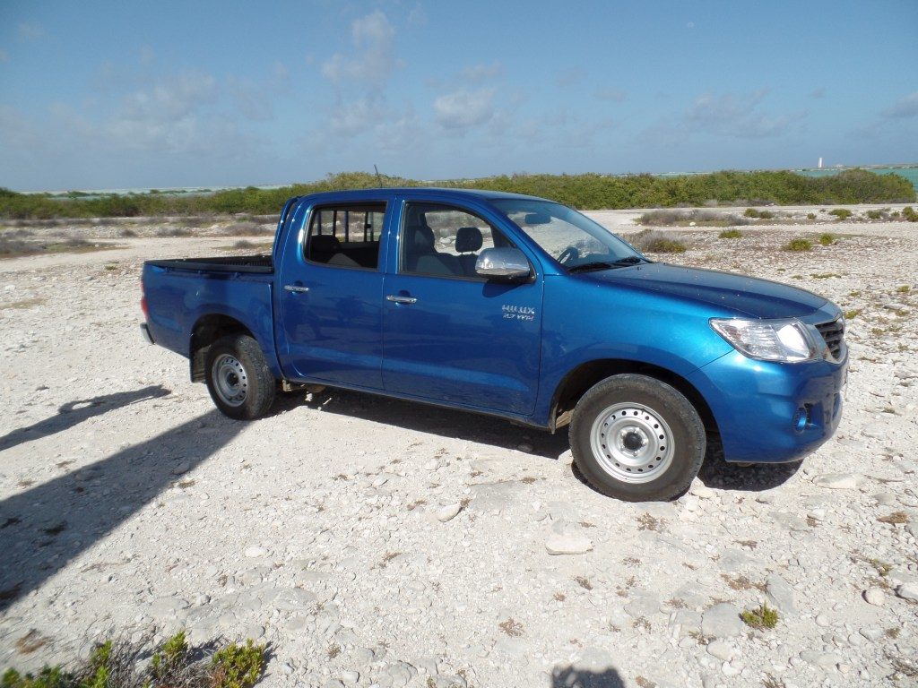 Blue Bonaire Pickup