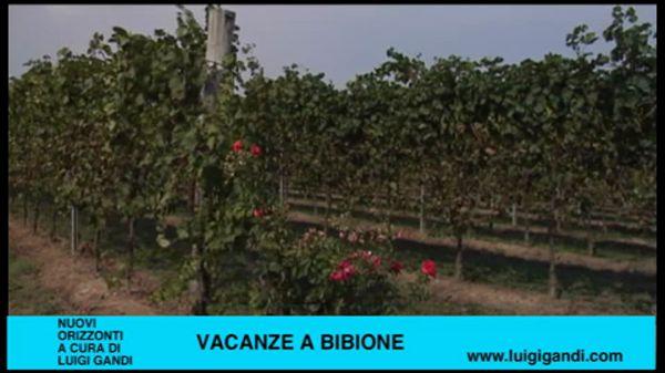 Vacanze a Bibione – puntata 40 – Agriturismo al Cason – seconda parte
