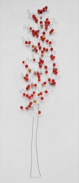 albero11