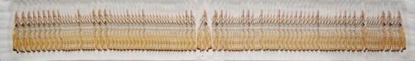 Guerrieri della luce n. 1 arch.n.987 collage di 100 foto, cm 23x150, anno 2011