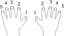 the hands luiraffimarti