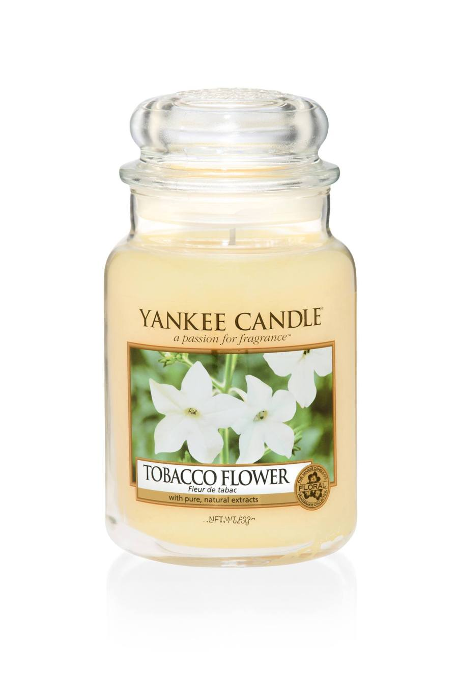A tall glass jar full of some white coloured wax, with a label that has yankee candle written in white writing, tobacco flower written in black writing, and a picture of some white flowers on it, on a white background.