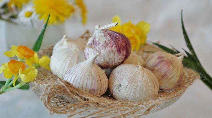 consumati in mod regulat usturoi pentru efect antitumoral