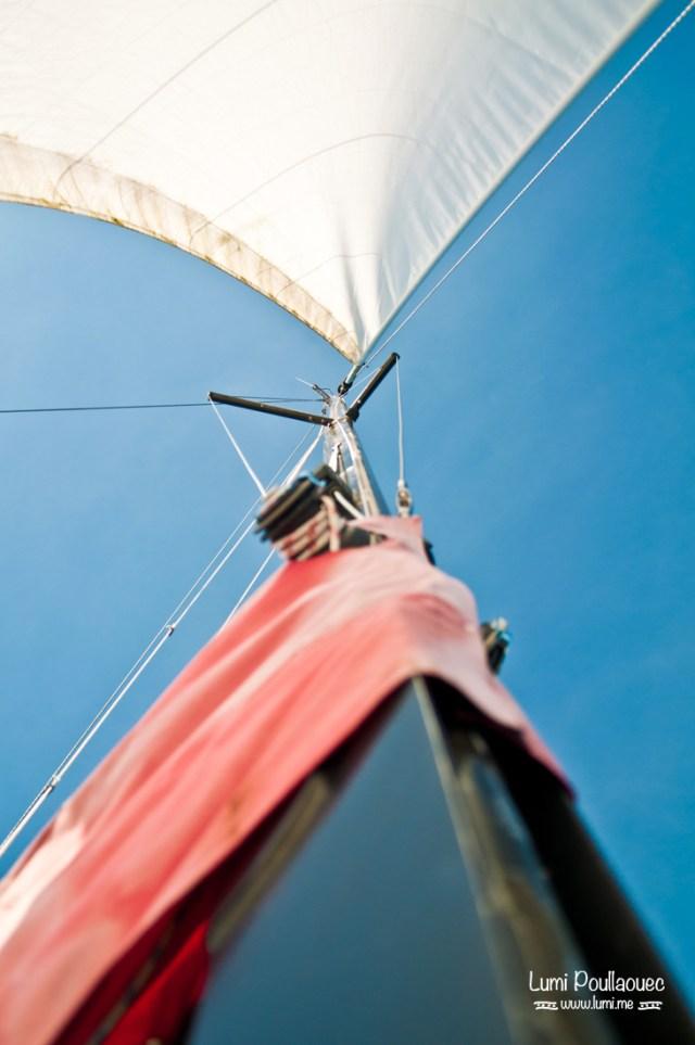 Lac Saimaa - Finlande - catamaran grande voile