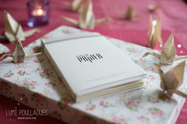 Carnet-rose-le-papier-fait-de-la-resistance-4
