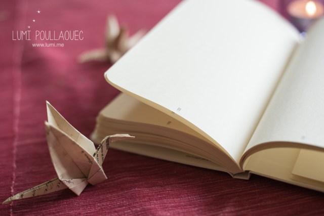 Carnet-rose-le-papier-fait-de-la-resistance
