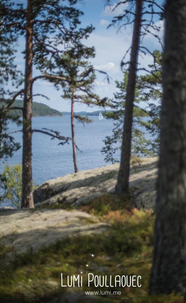 FINLANDE2014-16_36