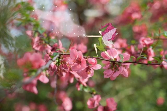 Fée du printemps faisant fleurir toutes les fleurs dans les jardins. © Lumi Poullaouec