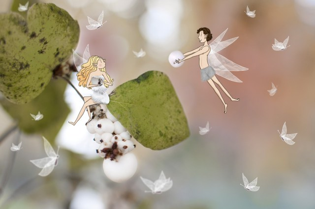Couple d'éphémères, petites fées de la nature. © Lumi Poullaouec