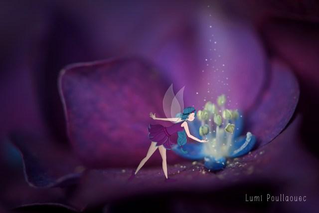 lumi-poullaouec-fee-bleue