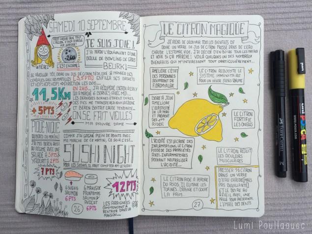 journal intime lutte contre la graisse régime journaling storytelling citron magique