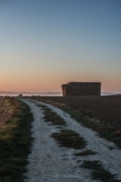 Photo prise par Lumi Poullaouec d'un magnifique lever de soleil sur les champs de Seine et Marne.