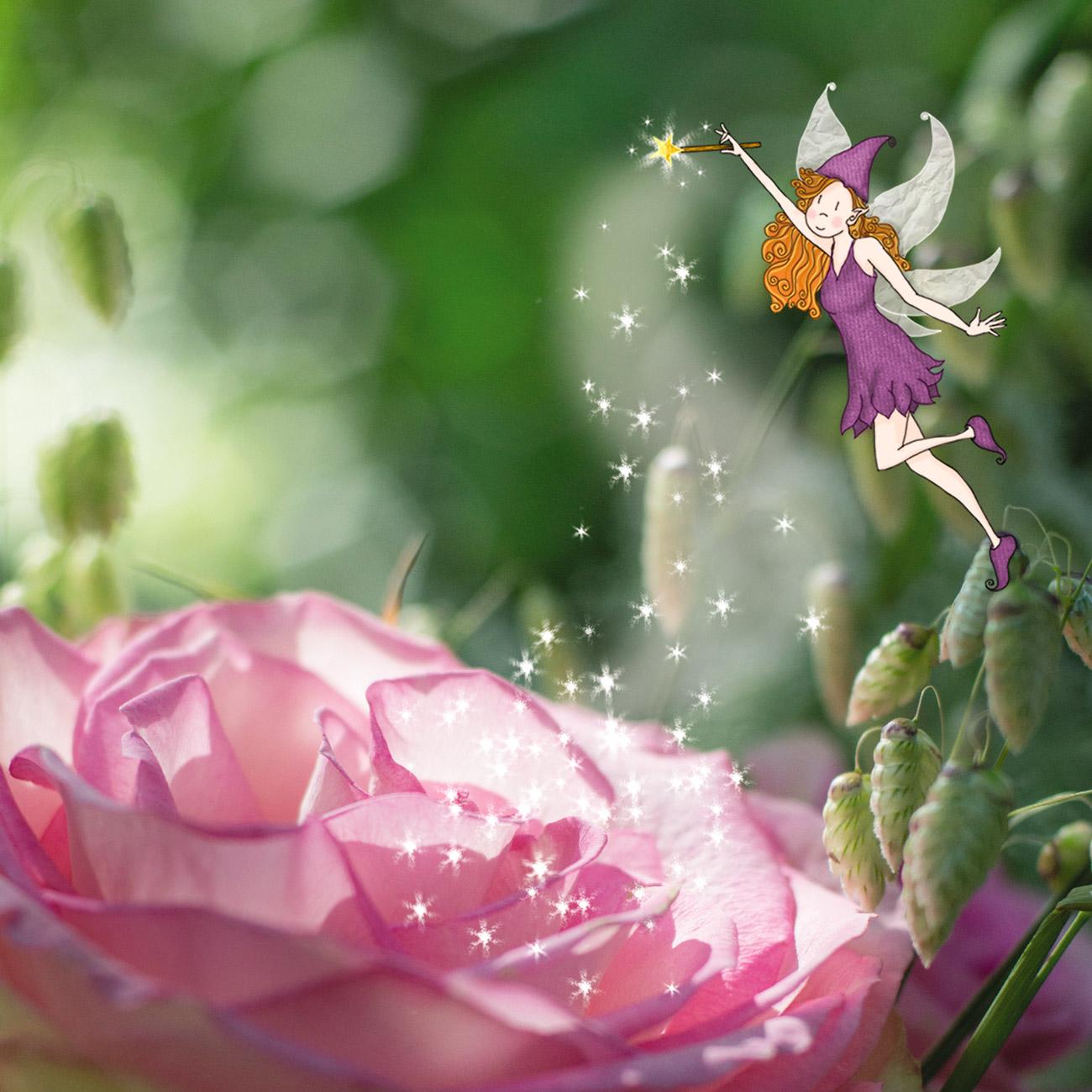 fée sur rose - Lumi Poullaouec - Création - Photographie et illustration féérique