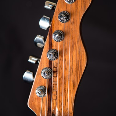 luminous_guitars-centerline-21