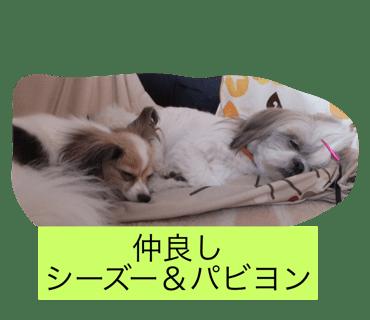 LINEスタンプ審査通過