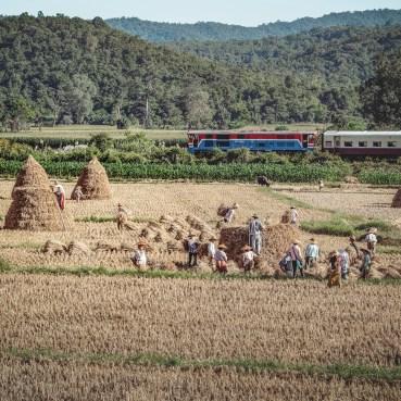 Myanmar--2