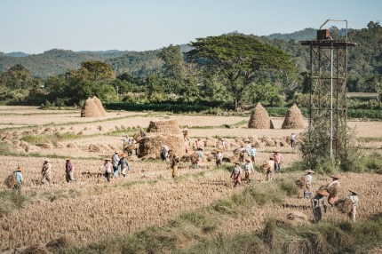 Myanmar-3573