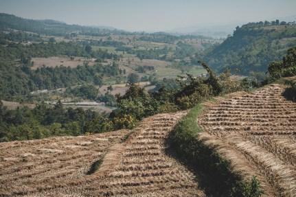 Myanmar-3764