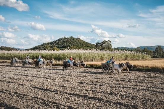 Myanmar-4199