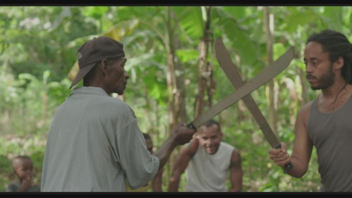 haitianmachetefencingstill2