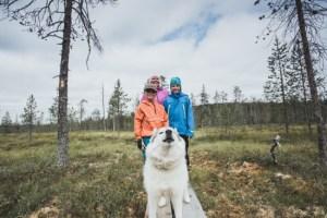 20-vuotias Syötteen kansallispuisto on suositumpi kuin koskaan