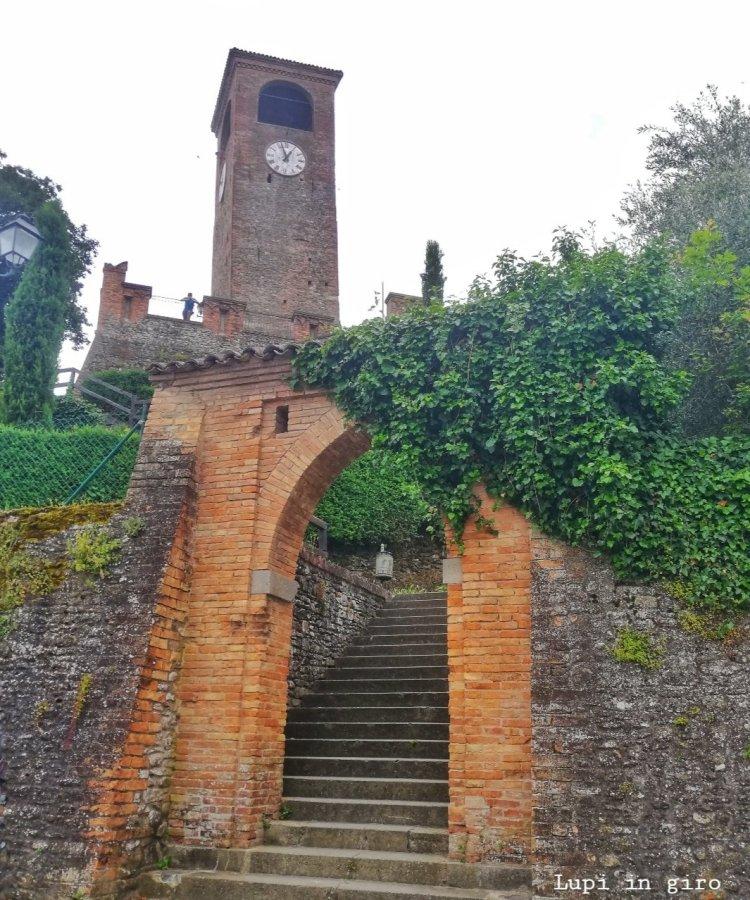 Cosa vedere a Castelvetro di Modena