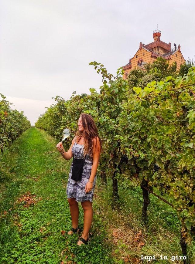 Cantine da visitare in Franciacorta: Castello Bonomi