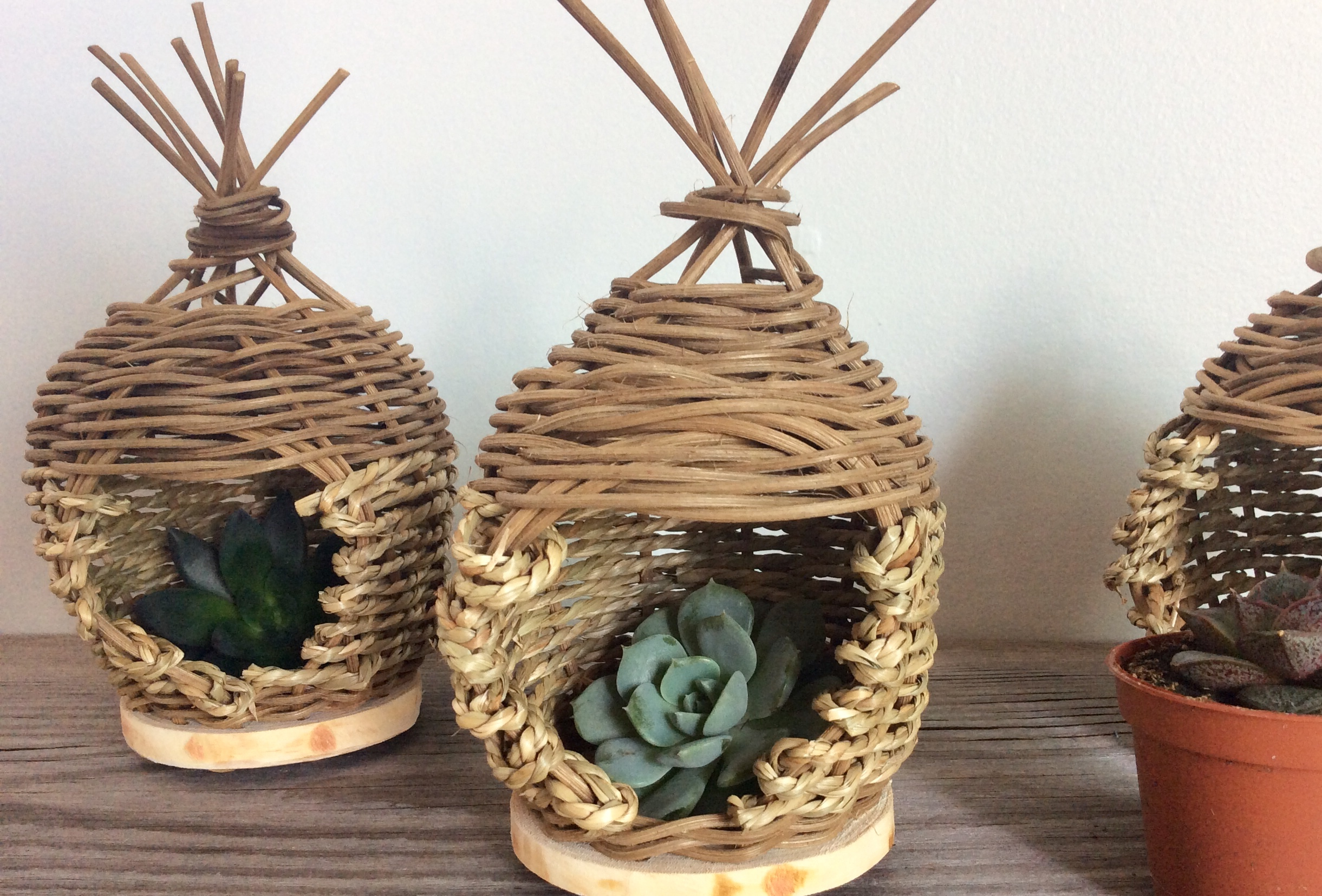 Woven Air Planters with Amy Dugas