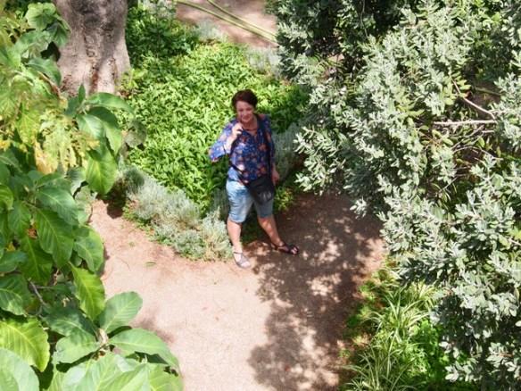 Garten/Tavira - Montagszeuch