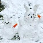 und noch mehr Schnee - Schneehasen