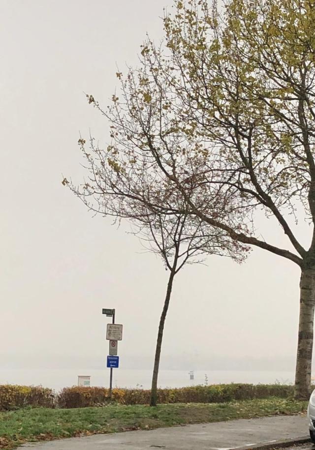 finde die Ostsee