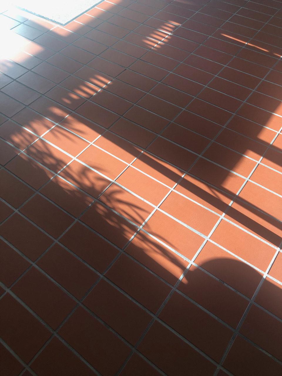 Coronawoche 59 (April vorbei)- Freitagszeuch