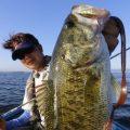 注目のデカいフリックカーリー7.8インチサイズがついに登場/リサーチ魔として知られる琵琶湖プロガイドの平村尚也プロデュースもの!